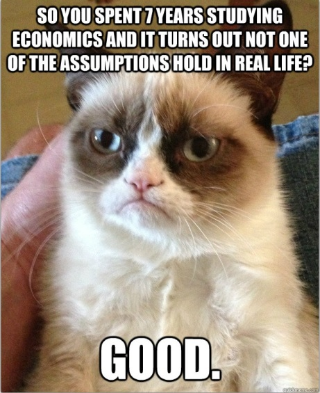 Grumpy Economics cat